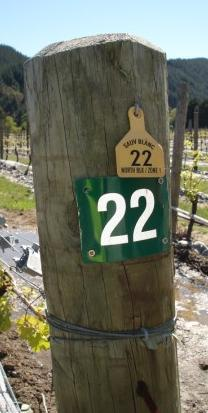 vineyard markers